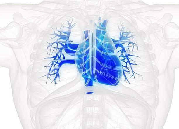 minimal invaziv kalp ameliyatı